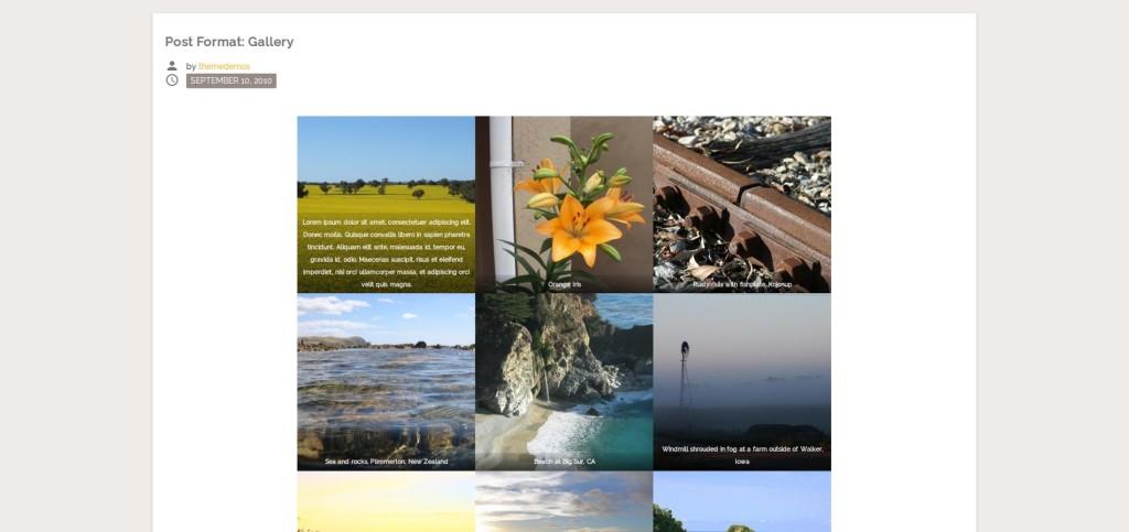 The M.X. live shot of WordPress's native gallery.